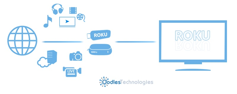 Roku Development Services