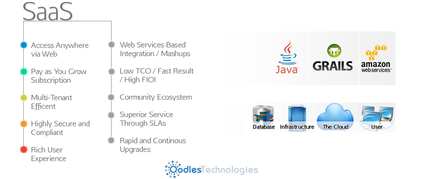 SaaS Software Application services
